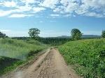 Предложение лот 1192 - Продается участок в Богдановском