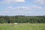 Уфа - Земельные участки: ИЖС - Участок 9 соток в дачном поселке по Ярославскому шоссе. - Лот 1237