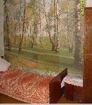 Уфа - Вторичное жилье - Сдам 2-комнатную квартиру в Уфе ост.Ждб, ул.Комсомольская - Лот 741