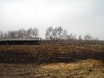 Уфа - Земельные участки - Продаются объекты недвижимости в нефтегазоностном районе Башкирии - Лот 910