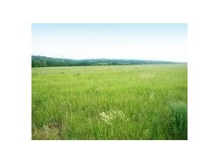Уфа - Земельные участки - Продам земельный участок 260 соток в Башкортостане